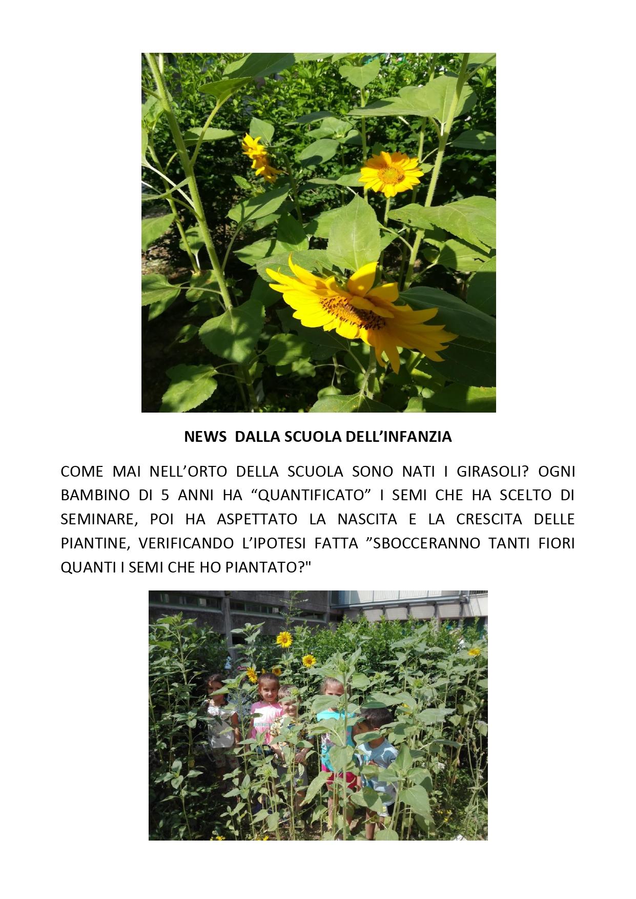 news_dalla_scuola_infanzia